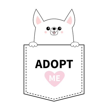 Adopt me. Chihuahua dog in the pocket. Holding paws. Pink heart. Cute cartoon animals. Puppy pooch character. Dash line. Pet animal collection. T-shirt design. Baby background. Flat design Vector