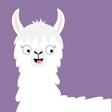 Llama alpaca happy head face. Cute cartoon funny kawaii smiling character. Childish baby collection. Fluffy hair fur. T-shirt, greeting card, poster template print Flat design Violet background Vector Ilustrace