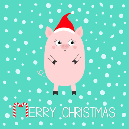 Pig piglet. Cute cartoon funny baby character. Hog swine sow animal. Merry Christmas. Santa hat. Chinise symbol of 2019 new year. Zodiac sign. Flat design. White background. Snow flake. Vector