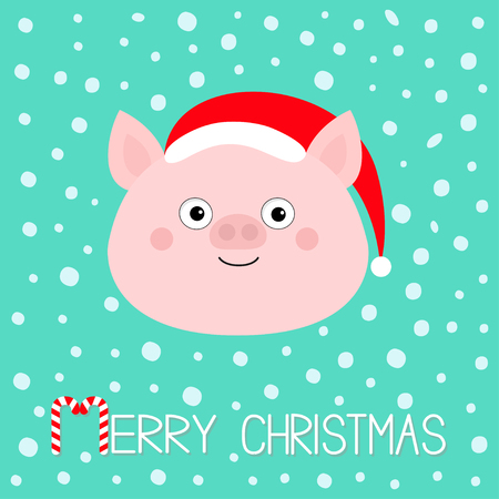 Merry Christmas. Pig piglet face. Cute cartoon funny baby character. Hog swine sow animal. Santa hat. Chinise symbol of 2019 new year. Zodiac sign. Flat design. White background. Snow flake. Vector