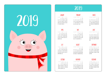Pocket calendar layout 2019 new year. Pig head in red winter scarf. Week starts Sunday. Cute cartoon character. Vertical orientation. Flat design. Blue background. Vector illustration