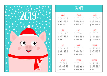 Pocket calendar layout 2019 new year. Pig head in red winter hat and scarf. Week starts Sunday. Cute cartoon character. Vertical orientation. Flat design. Blue snow background. Vector