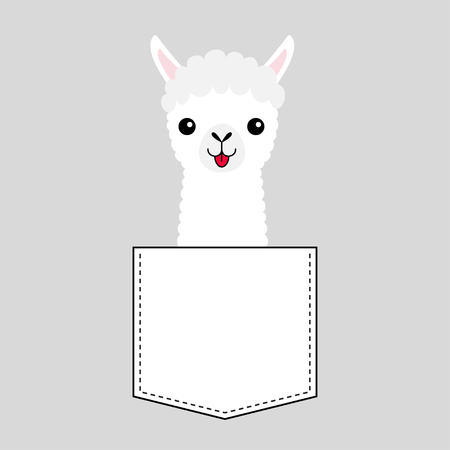 Llama alpaca face head in the pocket. Cute cartoon animals. Kawaii character. Dash line. White and black color. T-shirt design. Baby gray background. Isolated. Flat design. Vector illustration Illustration