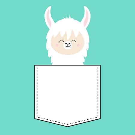 Alpaca llama face sitting in the pocket. T-shirt design. Cute cartoon funny character. Kawaii animal. Love Greeting card. Flat design style. Blue background. Isolated. Vector illustration