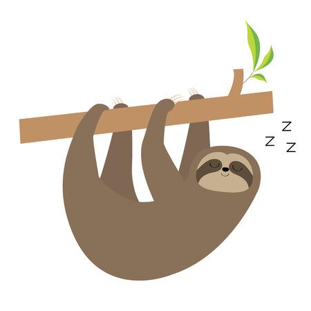 Schlafendes Faultier, das am Baumast hängt. Niedliche kawaii Baby-Zeichentrickfigur. Symbol für die Sammlung von wilden Dschungeltieren. Kindererziehung. Isoliert. Weißer Hintergrund. Flaches Design. Vektor-Illustration