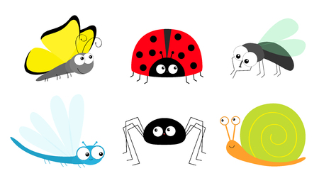 Butterfly Lady bug ladybird Fly Housefly Spider Snail Dragonfly insect icon set. Baby kids collection. Cute cartoon kawaii funny character. Smiling face. Flat design. White background. Vector