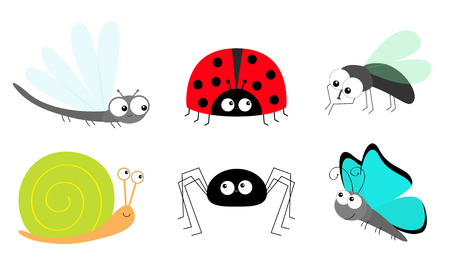 Lady bug ladybird Fly Housefly Spider Butterfly Dragonfly Snail insect icon set. Baby kids collection. Cute cartoon kawaii funny character. Smiling face. Flat design. White background. Vector Ilustracja
