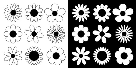 Camomile big set. Daisy chamomile line silhouette icon. Camomile big set. Cute round flower head plant collection. Love card symbol. Growing concept. Flat design. Black and white background. Vector