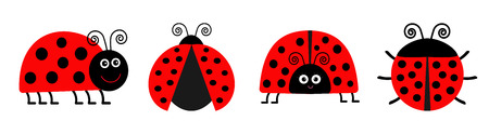 Ladybug Ladybird icon set line. Funny insect. Cute cartoon kawaii funny character. Flat design. White background. Isolated. Vector illustration Çizim