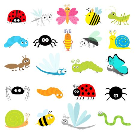 Conjunto de iconos de insectos. Mariquita Mosquito Mariposa Abeja Saltamontes Escarabajo Oruga Araña Cucaracha Mosca Caracol Libélula Hormiga Señora pájaro Gusano. Personaje de dibujos animados lindo kawaii divertido doodle. Diseño plano. Vector