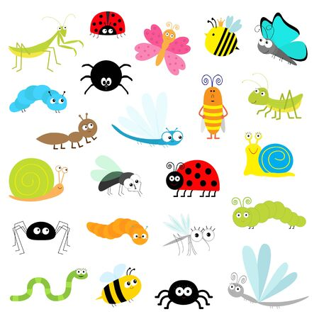 Insect icon set. Mantis Lady bug Mosquito Butterfly Bee Grasshopper Beetle Caterpillar Spider Cockroach Fly Snail Dragonfly Ant Lady bird Worm. Cute cartoon kawaii funny character. Flat design. Vector