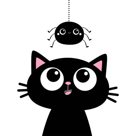Black cat kitten face head silhouette looking up to hanging spider. Cute cartoon funny character. baby animal. Pet sticker. Flat design. Scandinavian style. White background Vector illustration