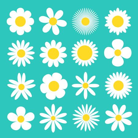 Daisy chamomile icon. White camomile super big set. Cute round flower head plant collection. Love card symbol. Growing concept. Flat design. Green background. Isolated. Vector illustration