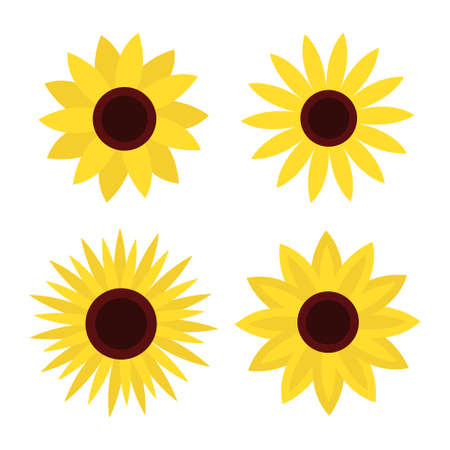 Sunflower set. Four yellow sun flower icon. Cute round summer plant collection. Love card symbol. Growing concept. Closeup. Flat design. Isolated. White background. Vector illustration