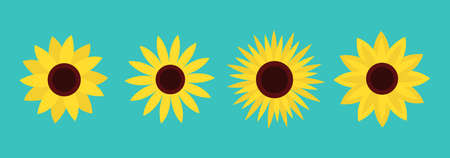 Sunflower set line. Four yellow sun flower icon. Cute round plant collection. Love card symbol. Growing concept. Flat design. Green background. Isolated. Vector illustration 向量圖像