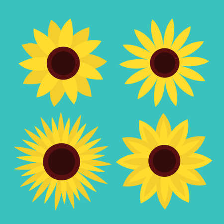 Sunflower set. Four yellow sun flower icon. Cute round plant collection. Love card symbol. Growing concept. Flat design. Green background. Isolated. Vector illustration