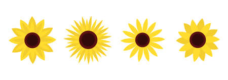 Sunflower set line. Four yellow sun flower icon. Cute round summer plant collection. Love card symbol. Growing concept. Closeup. Flat design. Isolated. White background. Vector illustration