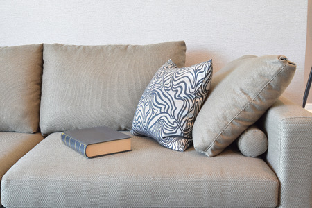 comfortable velvet sofa with grey striped pillows in modern living room Standard-Bild