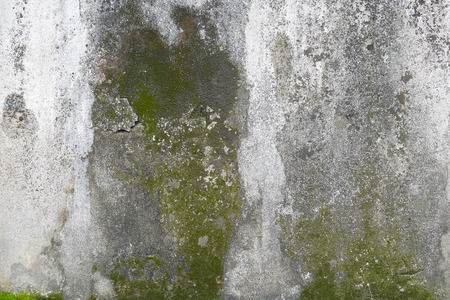 green brown: concrete wall with grunge texture and moss green algae , texture background Stock Photo