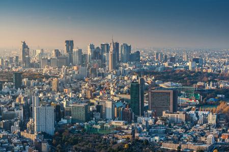 夕暮れ、日本東京の街並のスカイライン 写真素材
