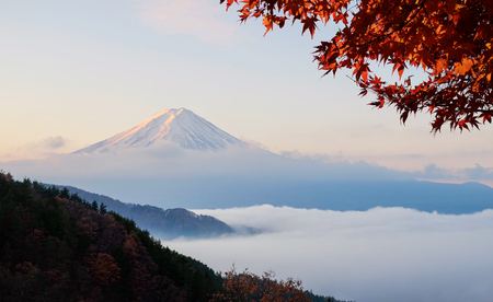 sunset clouds: Beautiful Mount Fuji with sea of mist and red maple leaves in the autumn morning