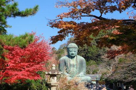 kamakura: Statue of Amitabha Buddha Daibutsu located at the Kotokuin Temple in Kamakura, Japan in Autumn season