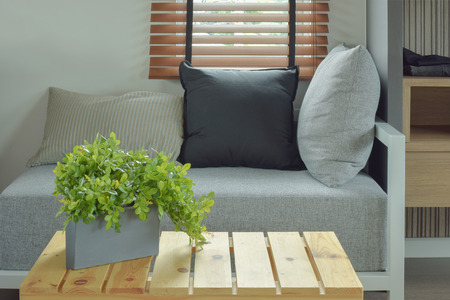 comfy: Plant pot on center wooden table and comfy seat in living room Stock Photo