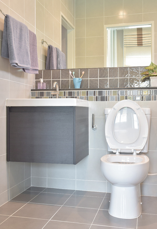 water closet: Water closet and lavatory with towel rail in modern style toilet