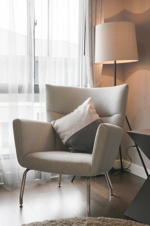 luxury room: Modern classic style armchair with standing lamp at the corner of living room