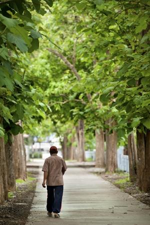 man walk on teak way photo