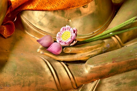 Lotus in hand image of buddha photo