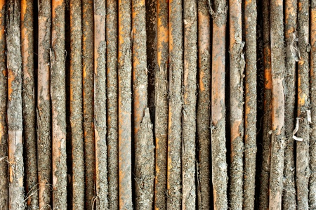 bamboo wall have cement stain  photo