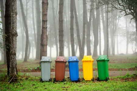 reciclar basura: cinco colores reciclan bandejas en bosque de pinos