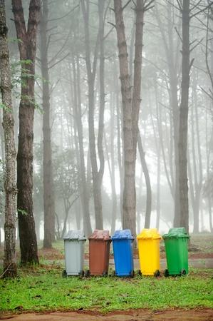 recycle bin: cinco colores papeleras de reciclaje en el bosque de pino