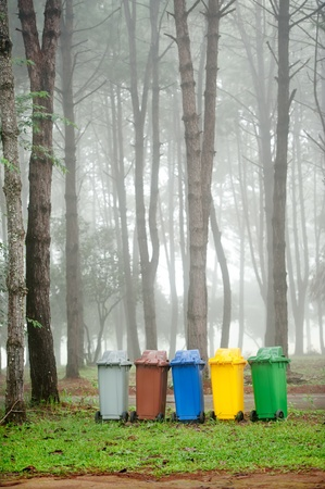 recycle bin: five colors recycle bins in pine forest