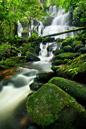 waterfall in thai national park. In the deep forest on mountain. photo