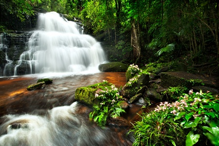 background waterfalls: waterfall in thai national park. In the deep forest on mountain.