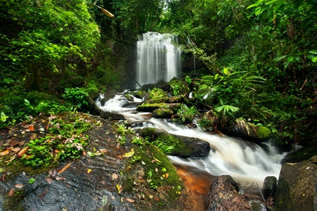 national plant: waterfall in thai national park. In the deep forest on mountain.