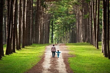 walk in: Mother and baby walk on country rural road in pine forest