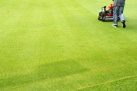worker cutting grass on golf green
