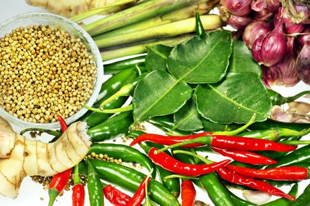 ingredient of thai spicy soup Stock Photo - 13031390