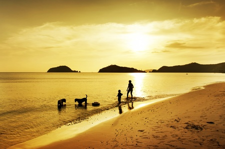 beach animals: silhouette of son, mother and dog walking on beach