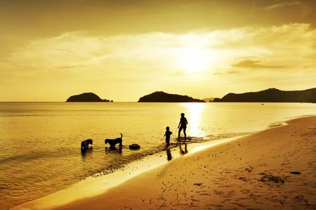 mujer con perro: silueta del hijo, la madre y el perro caminando en la playa