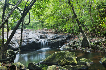 gill: waterfall in Pang Sida national park  , thailand Stock Photo