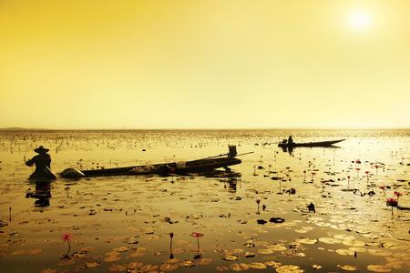 fisherman fishing in big lotus  lake