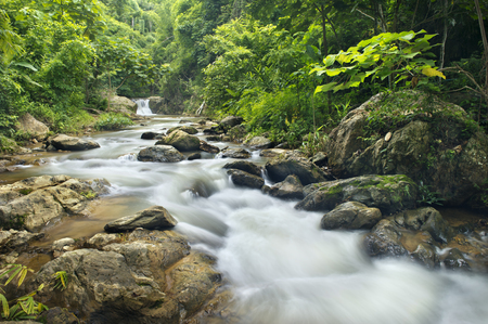 gill: waterfall in national park ,Phrae  ,north of thailand Stock Photo