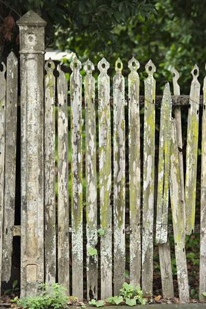 old fence: Old fence