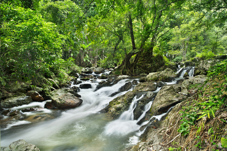 rill: waterfall in national park , Kamphaeng Phet , thailand