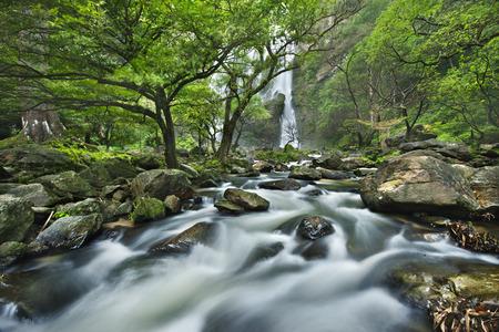 rill: waterfall in national park , Kamphaeng Phet , thailand