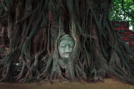 Old sandstone Buddha head in tree roots at Wat Mahathat, Ayutthaya, Thailand
